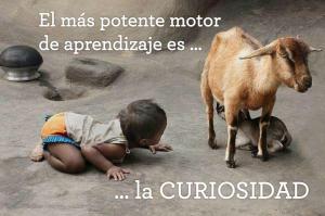 Elogio de la curiosidad